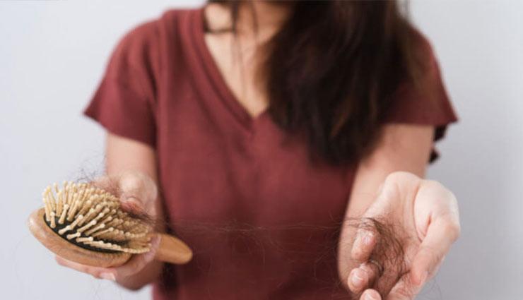 Hair Care Tips : हेयर फॉल से हैं परेशान तो डाइट में शामिल करें ये  हेल्दी फूड, फिर देखें कमाल