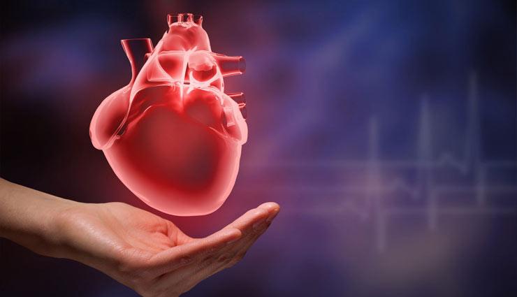 coronavirus,sabudana,sago,sabudana ki kheer,sabudana ki khichdi,sabudana medicine,antioxidant,energy,weight,heart,bones,health article in hindi ,साबुदाना, सागो, साबुदाना की खीर, साबुदाना की खिचड़ी, साबुदाना औषधि, एंटीऑक्सीडेंट, ऊर्जा, वजन, दिल, हडि्डयां, हिन्दी में स्वास्थ्य संबंधी लेख