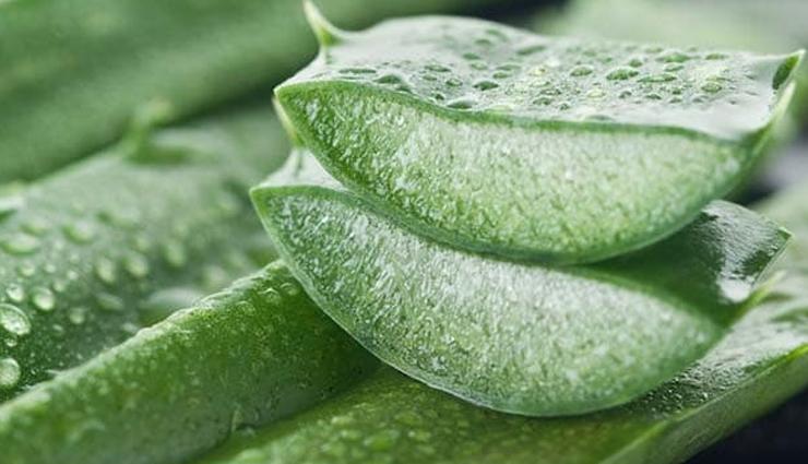 lemon juice,aloe vera,chamomile,echinacea,toothpaste,honey,mint,home remedies to treat acne,acne treatment,home remedies,skin care tips,beauty tips