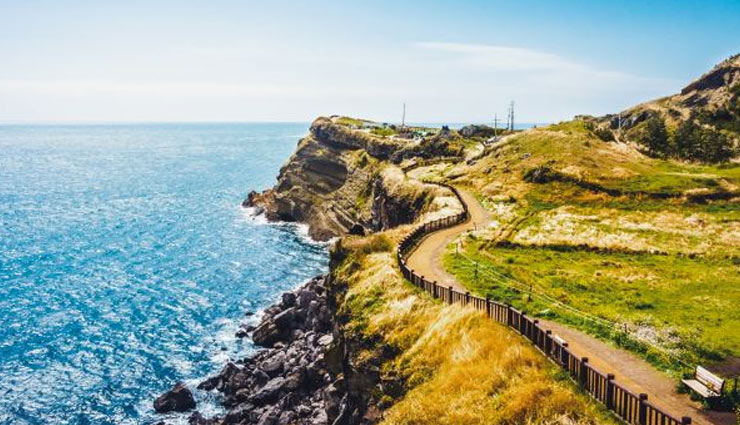 5 Adventure Activities To Do in Jeju, South Korea