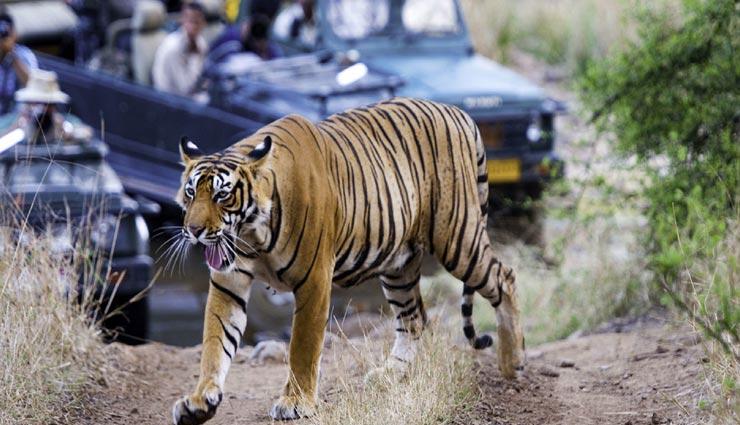 tourist places,indian tourist places,kids destinations ,पर्यटन स्थल, भारतीय पर्यटन स्थल, किड्स डेस्टिनेशन्स