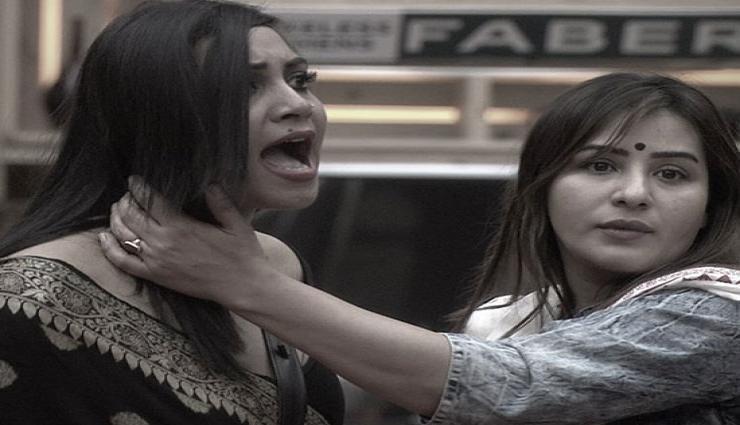 बिग बॉस 11 : प्रियांक पर बरसी अर्शी खान, 'कहाँ अपने कपड़े फाडून्गी, तुम्हारे बाप ने नहीं खरीद के दिए हैं'