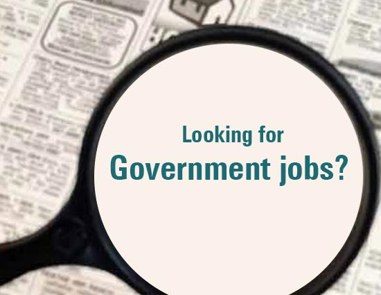 5 Tips To Succeed in Government Job - lifeberrys com