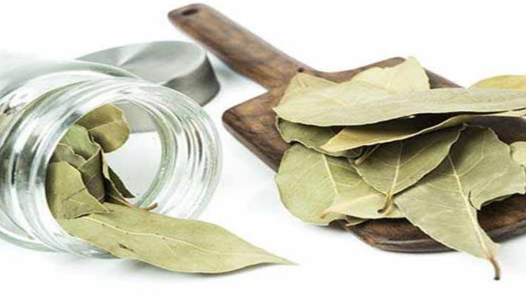 तेजपत्ता बनता हैं कई बिमारियों का काल, जानें इसके औषधीय गुणों के बारे में