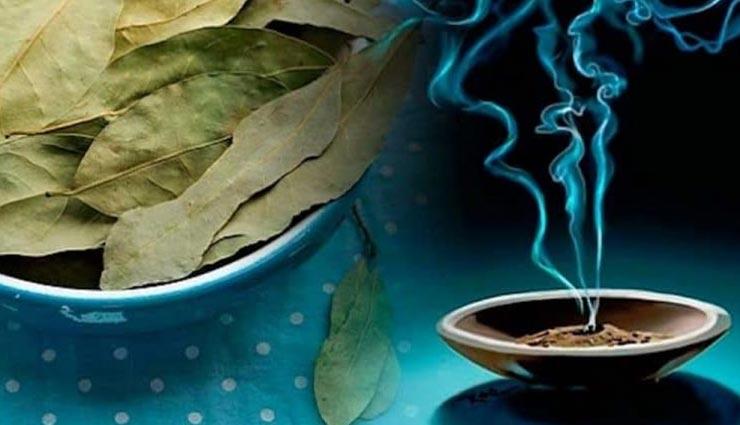 Health tips,health tips in hindi,bay leaf tips,diseases removal by bay leaf ,हेल्थ टिप्स, हेल्थ टिप्स हिंदी में, तेजपत्ते का इस्तेमाल, तेजपत्ते से दूर बीमारियां