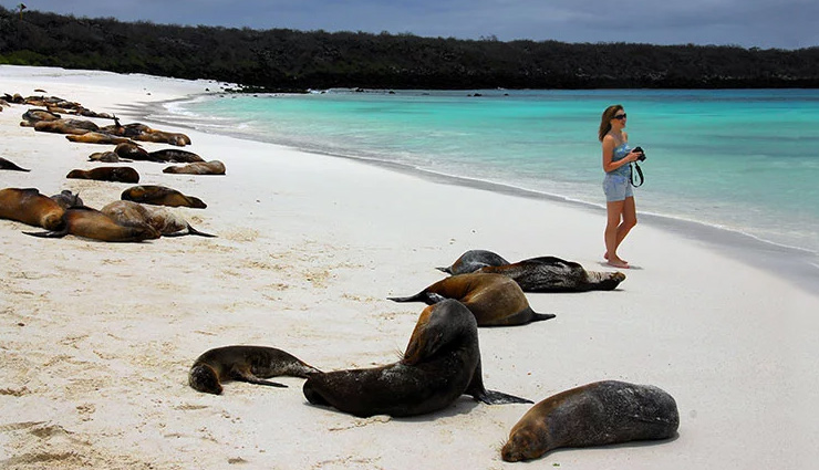 5 Breathtaking Beautiful Beaches To Visit in Galapagos Islands