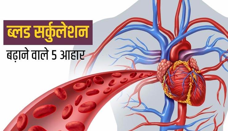 ये 5 आहार बनाए रखेंगे शरीर का ब्लड सर्कुलेशन संतुलित