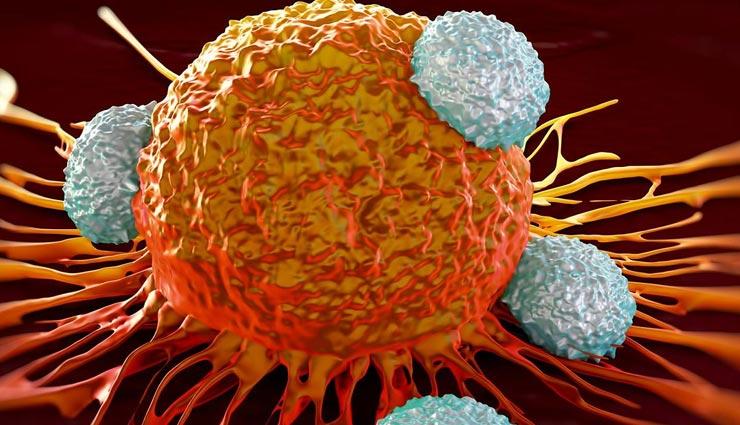 cancer,cancer treatment,Health ,कैंसर,हेल्थ