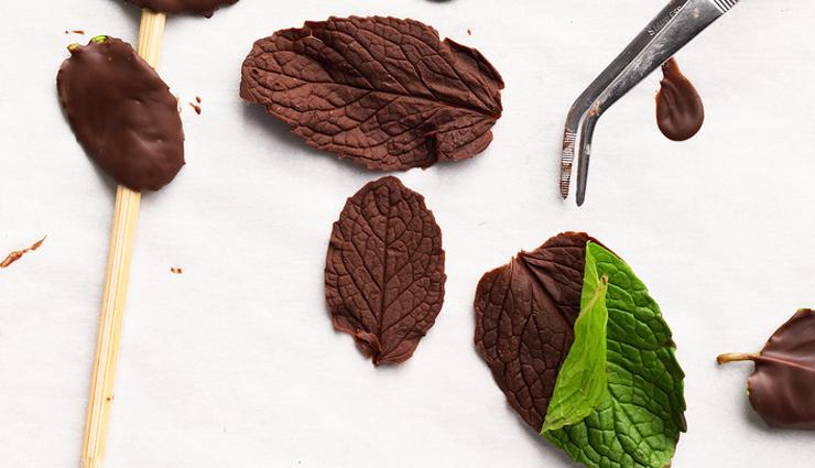 chocolate and mint face scrub,diy face scrub,homemade face scrub,beauty tips,skin care tips