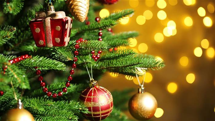 history of christmas tree,importance of christmas tree,christmas tree,merry christmas,astrology behind christmas tree