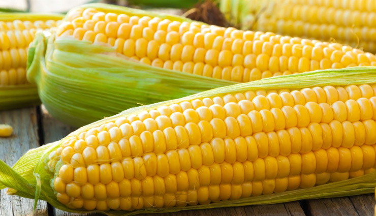 health tips in hindi,health tips in hindi,corn benefits,corn benefits in hindi,corn reduce cholesterol,corn prevention of cancer,corn helps in beauty,corn increase body weight,corn strong bones