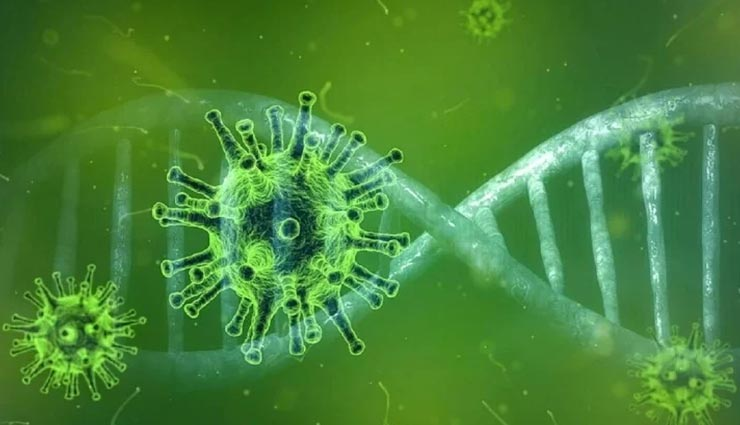 Health tips,health tips in hindi,health research,corona research,coronavirus,corona vaccine ,हेल्थ टिप्स, हेल्थ टिप्स हिंदी में, हेल्थ रिसर्च, कोरोना रिसर्च, कोरोनावायरस, कोरोना वैक्सीन