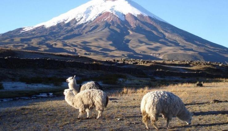 places to visit in ecuador,ecuador,loja,tena,cayambe coca national park,papallacta entrance,cotopaxi national park,the back roads,cochasquí,travel,holidays