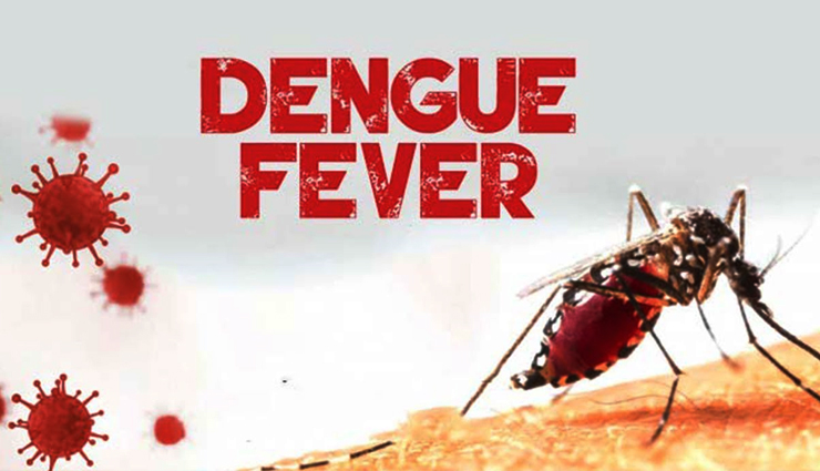 10 Remedies That Are Helpful in Treating Dengue Fever