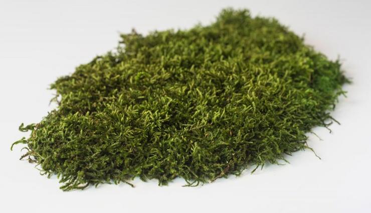 Health tips,healthy living,5 benefits of eating dried fenugreek seeds,benefits of eating kasuri methi
