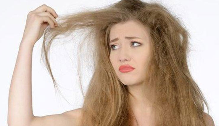 dry hair,home remedies for dry hair,hair care tips,beauty tips,hair remedies,ways to treat dry hair