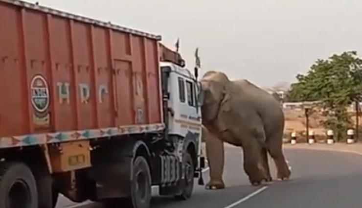 ड्राइवर का हॉर्न बजाना पसंद नहीं आया हाथी को, गुस्से में आकर किया हमला, देखे वीडियो