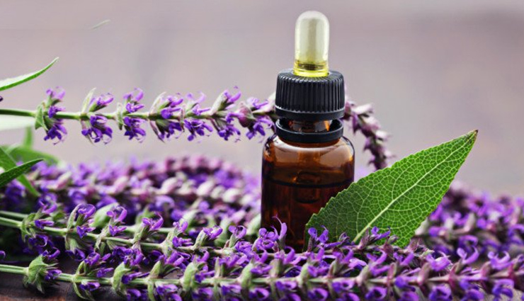 peppermint essential oil,lavender essential oil,eucalyptus essential oil,chamomile essential oil,rosemary essential oil,clary sage essential oil,frankincense essential oil,essential oils,essential oils for migraines,tips for headaches,Health tips,fitness tips
