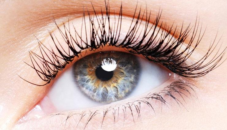 beauty tips,home remedies,thicker and longer eyelashes,beautiful eyes,simple beauty tips ,पलके, घनी पलके, खूबसूरत आँखे, ब्यूटी टिप्स, ऑलिव ऑयल उपाय, ग्रीन टी उपाय