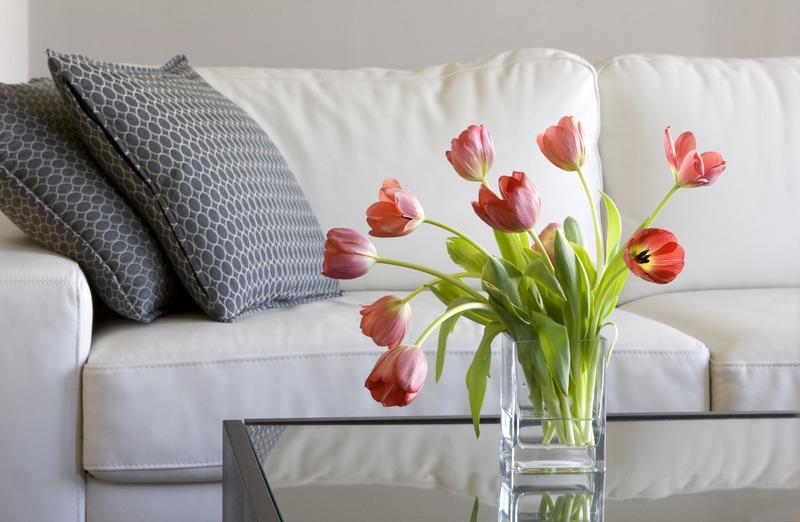 love and romance,flowers in home,different flowers,home decor tips,household tips ,हाउसहोल्ड टिप्स, होम डेकोर टिप्स, घर में ये फूल जरुर लगाए, घर में ये फूल लगाने से बना रहेगा प्यार और रोमांस का माहौल