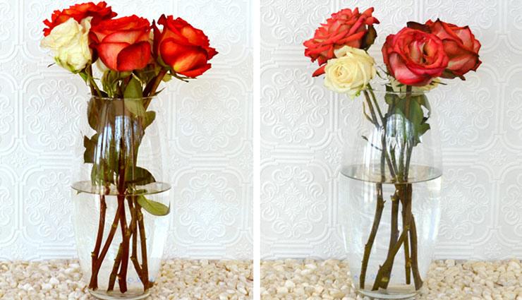 household tips,flowers fresh tips,flower tips,fresh flower,flower care tips ,फूल, फूलों की ताजगी, फूलों की देखभाल, फूलों का रखरखाव