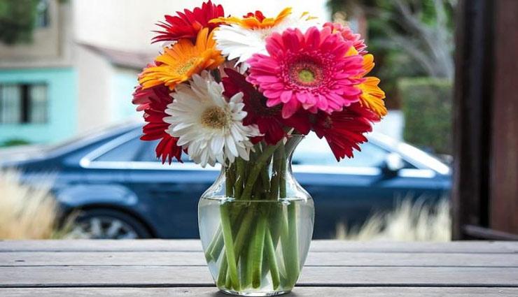 लम्बे समय तक बनाए रखें फूलों की ताजगी, इन टिप्स की मदद, महकेगा घर-आँगन