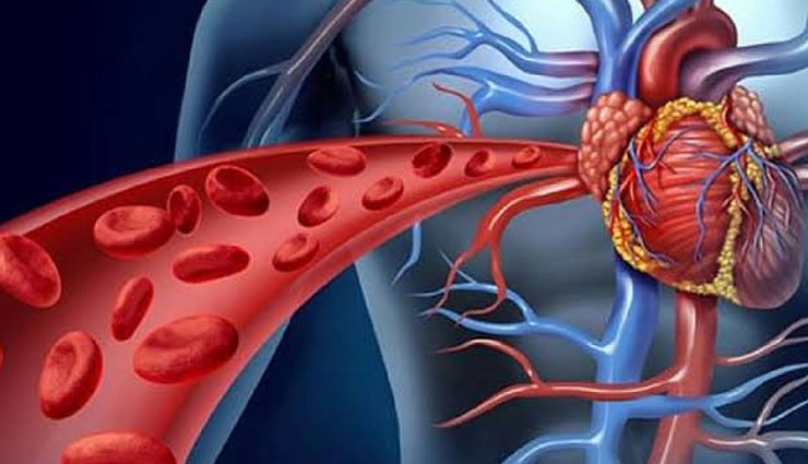 food for blood circulation,tips to improve blood circulation,Health tips,fitness tips