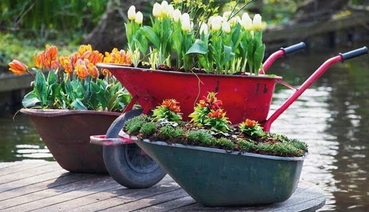 ways to decorate garden,garden decoration tips,household tips,decorating garden with waste material