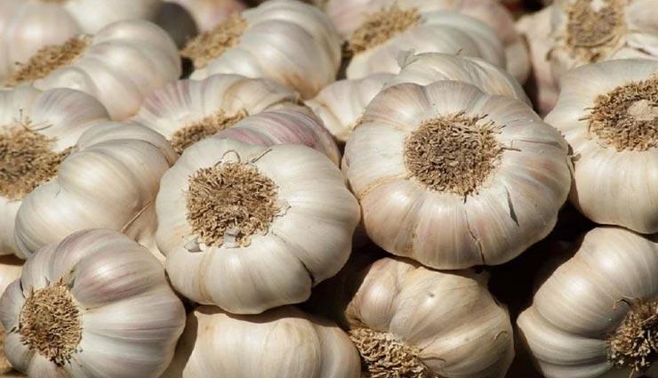 Health tips,health tips in hindi,garlic,garlic side effects ,हेल्थ टिप्स, हेल्थ टिप्स हिंदी में, लहसुन, लहसुन के नुकसान