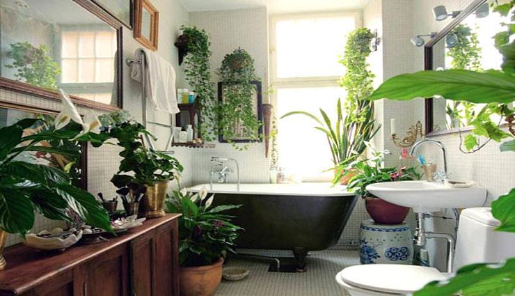 बाथरूम को देना चाहते है ग्रीनरी टच तो अपनाये ये तरीके