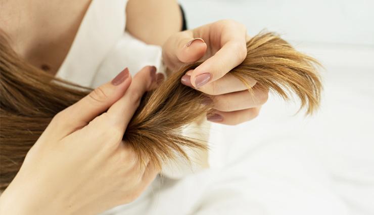 skin care tips,beauty tips,pears benefits,pear,hair care tips,hair beauty ,नाशपाती के फायदे त्वचा और बालों के लिए