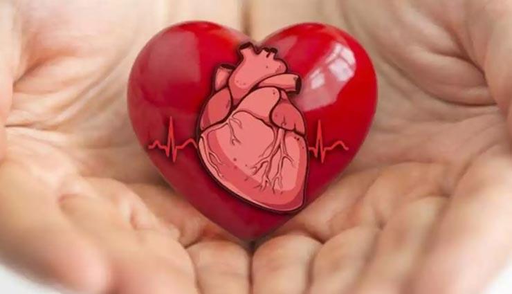 जवानी की ये आदतें सेहतमंद दिल के लिए साबित होगी घातक, लापरवाही पड़ेगी भारी
