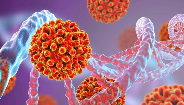 hepatitis b,natural remedies for hepatitis b,Health,liver,health news
