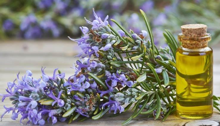 hair loss,herbs for hair loss,hair care tips,beauty tips