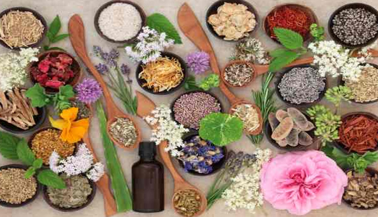 herbs,herbs for skin,beauty tips,skin care tips,beauty,beauty products