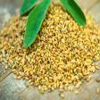 5 Amazing Benefits of Methi Seeds