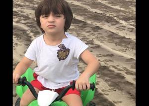 Gauri Khan Share Pics of Cutest Knight Rider