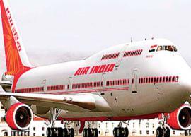 Delhi-bound Air India flight returns to Chennai airport after being hit by bird