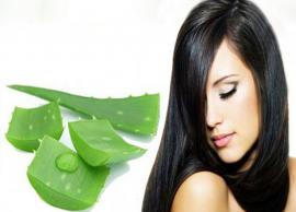 Amazing Beauty Benefits of Aloe Vera for Hair