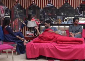 Bigg Boss 11- Arshi Insulted Her Grandfather, Made Vikas and Hiten Bow Down