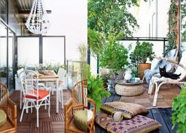 Few Mosquito Repellent Plants That You Can Easily Grow in Your Balcony