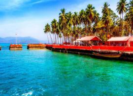 5 Most Happening Beaches To Visit in India