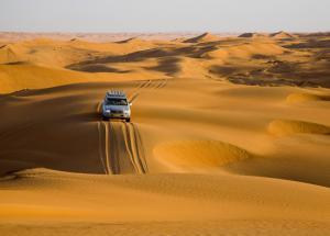 5 Best Desert Safari In The World