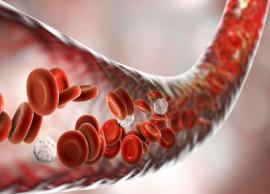 5 Best Foods To Help You Improve Blood Circulation