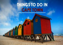 7 Must Do Things in Cape Town