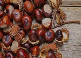 11 Reasons Why Chestnut is Good For Health