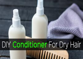 8 DIY Conditioner For Dry Hair