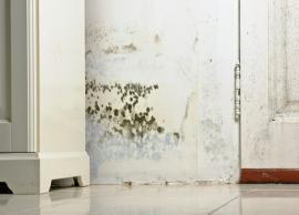 4 Ways To Help You Prevent Damp Walls During Monsoon