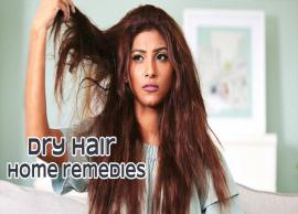 6 Effective Home Remedies To Treat Dry Hair