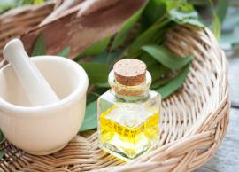 Few Ways in Which Eucalyptus Oil Can Be Used For Wellbeing